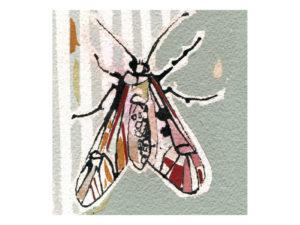 120-papillon-20×20