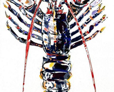 croquis-homard1
